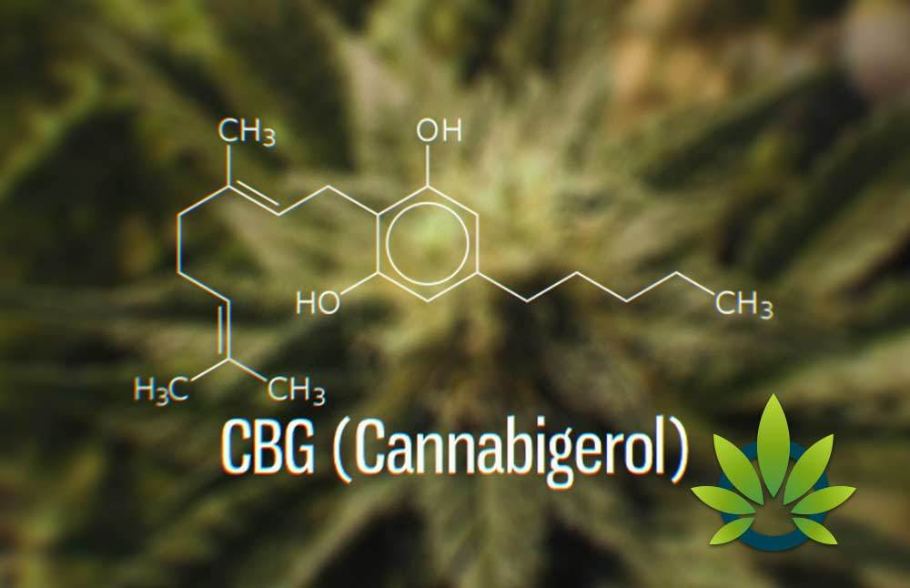 how is CBG different than CBD