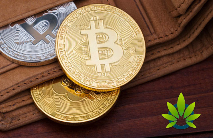 Best Places To Buy CBD Products With Bitcoin And Other Cryptocurrencies