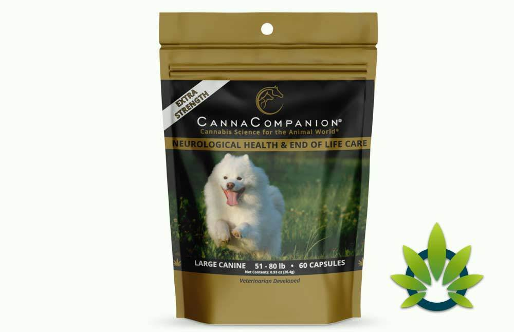 Canna Companion Pet Supplements: Whole Plant Hemp Oil for Dogs and Cats