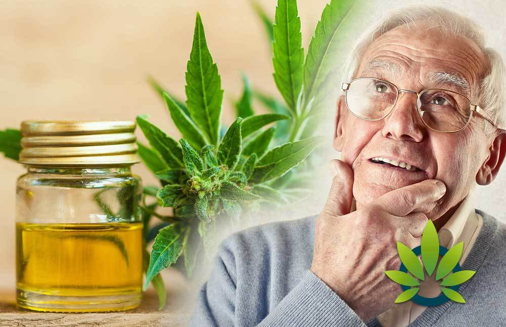 Hemp CBD: the Potential to Slow the Progression of Alzheimer's Disease