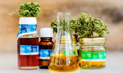 High Quality Third-Party CBD Oil Product Testing is Vital for Cannabidiol Benefits and Effectiveness