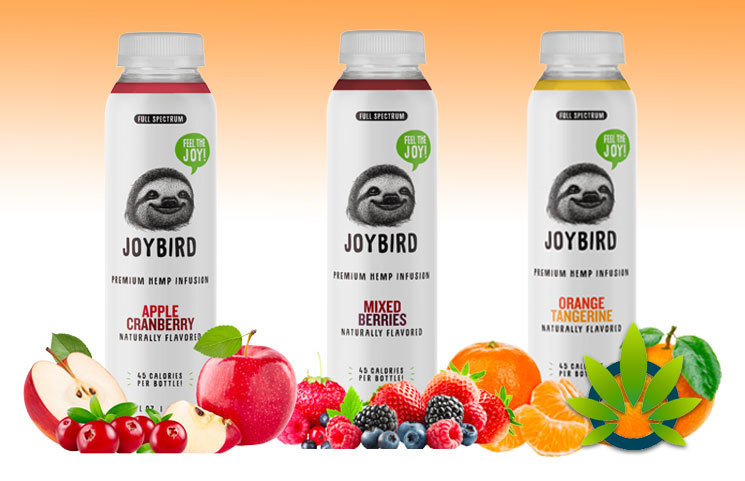 JOYBIRD: Full Spectrum Premium Hemp CBD-Infused Drink Beverages?