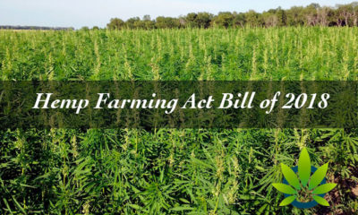 Legal Analysis of the Hemp Farming Act Bill of 2018: What is CBD Oil's Status?