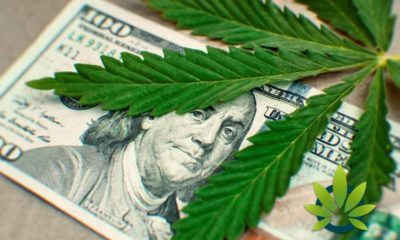Marijuana and High-Risk Banking