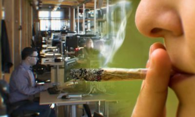 Marijuana's Impact In The Workplace: Medical Use Cases And Legal Barriers