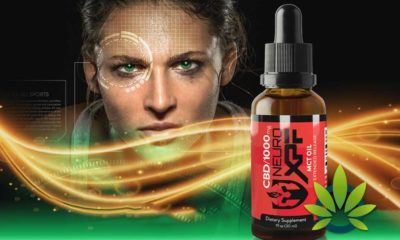 Neuro Xtreme Performance Fuel (XPF): Kyle Turley's CBD Oil Products