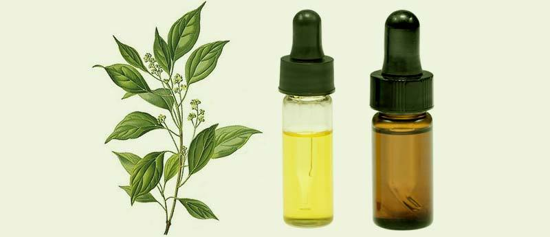 How CBD Oil Outshines These Top 11 Essential Oils For Treating Allergies