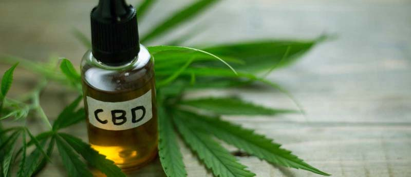 How CBD Oil Outshines These Top 11 Essential Oils For