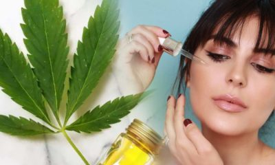 Top 5 Surprising CBD Oil Skincare Health Benefits with Topical Cannabis Salve Products