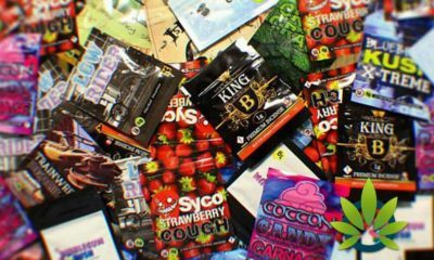 What Are Legal Highs And Can They Ever Really Be Banned?