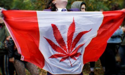 What Marijuana Users Need To Know About Legalized Weed In Canada