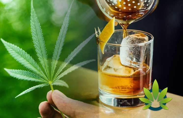 """CBD """"Gold Rush"""": How Hemp And Medical Marijuana's Industry Is About To Boom, And Bank"""