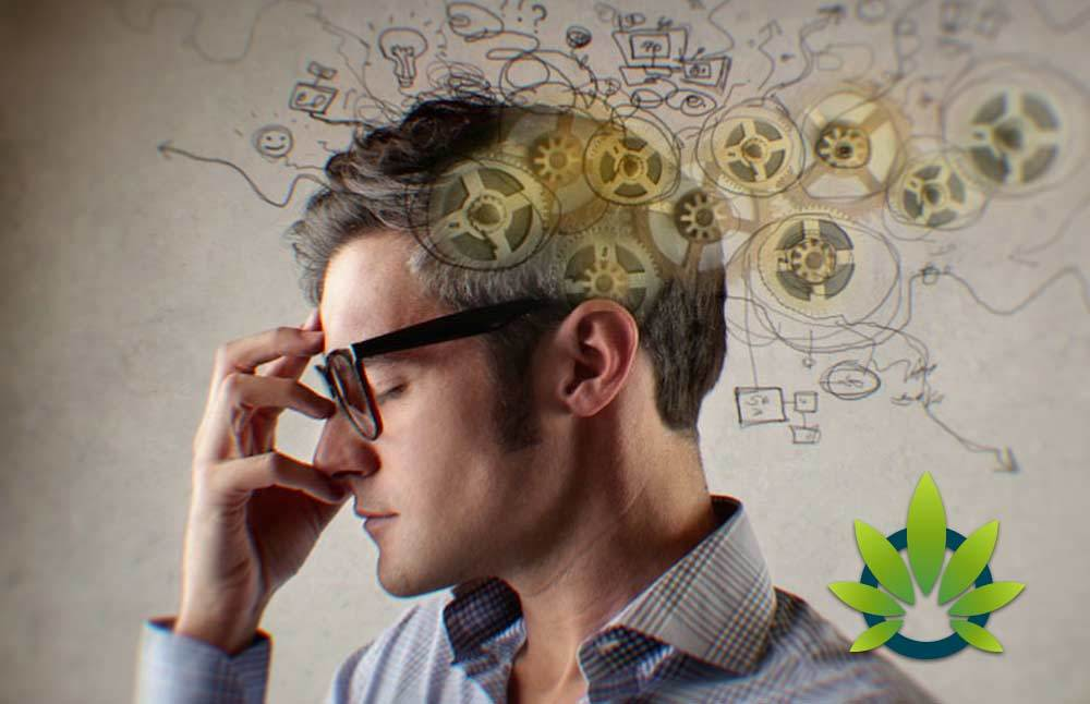 CBD-Has-the-Ability-to-Promote-Better-Focus-and-Concentration