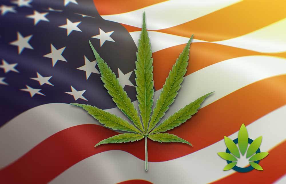 CBD laws in all 50 states and us territories