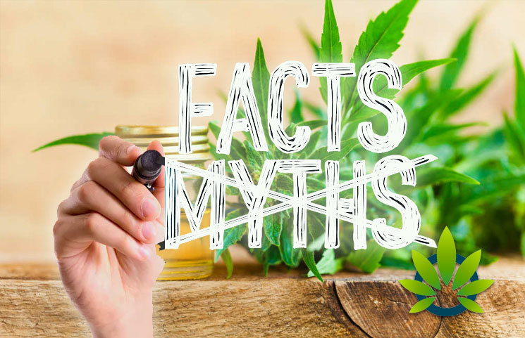 CBD myths debunked