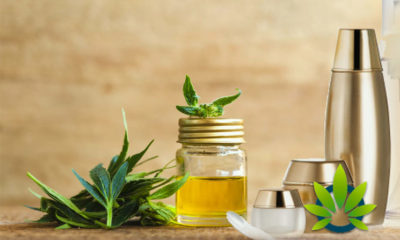 CBD Oil Free Trials: Know the Risks and Sample Offer Fee Terms Before Buying Cannabidiol Product Scams