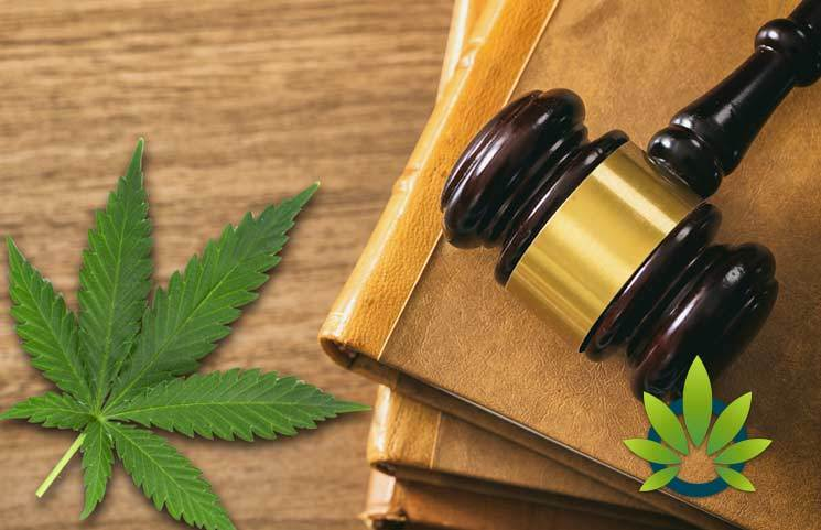 DEA to Take Action on Medical Cannabis Applications
