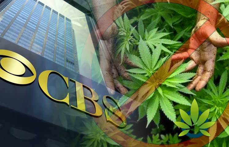 CBS-Rejects-Medical-Marijuana-Advertisement-from-Super-Bowl-Commercials
