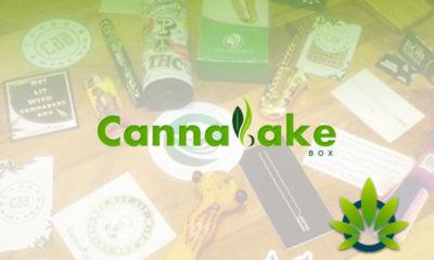 cannabake box