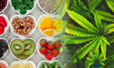Cannabinoids As Antioxidants And Neuroprotectants