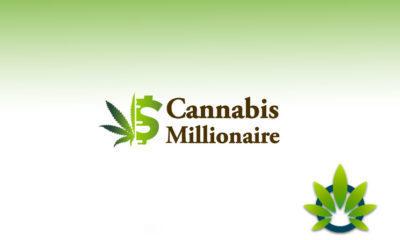 cannabis millionaire trader