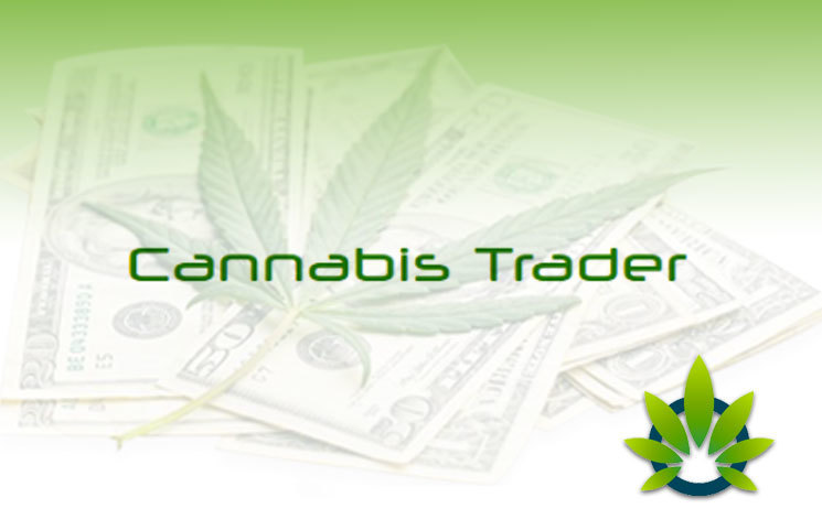 cannabis trader