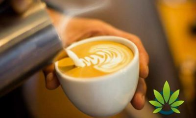 Coffee Shops and Bars Add CBD Related Beverages to Menus