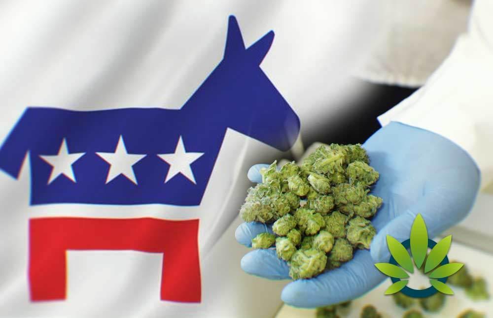 Democrat-Spending-Bill-Protects-Medical-Marijuana