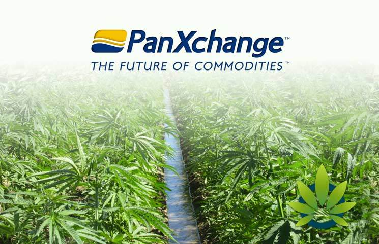 Denver-Based OTC Exchange PanXchange Launches Industrial Hemp Pricing As An Industry First Platform