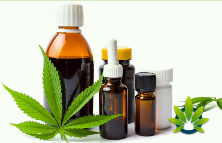 Full Extract Cannabis Oil (FECO) Guide