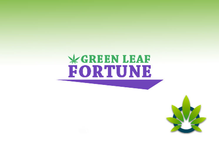 Green Leaf Fortune