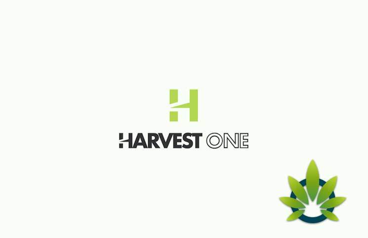 Harvest One Satipharm Rolls Out Reformulated CBD Capsules Sales in Europe