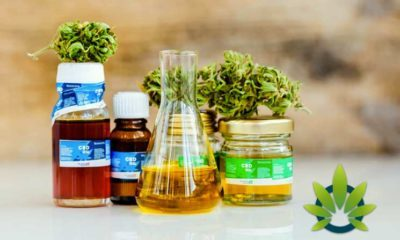 How-to-Find-Places-to-Buy-CBD-Oil-Supplements-Near-You