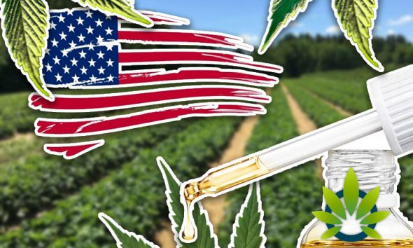 Made-in-USA CBD Oil Hemp Products Always Use Fair Labor Practices in a GMP Facility, Right?