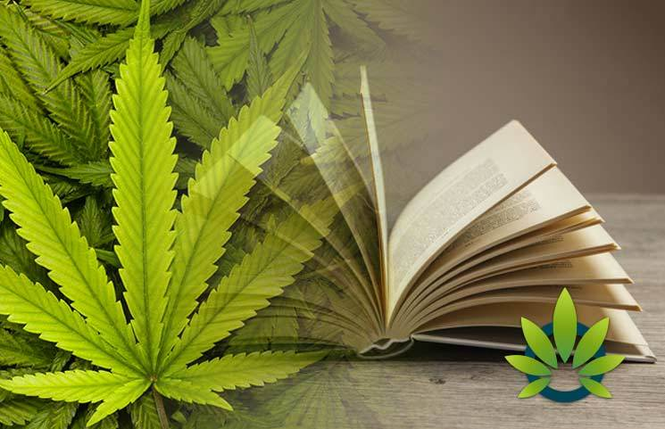 Marijuana, Hemp And Cannabis Glossary