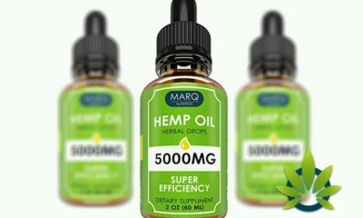 marq nutrition hemp oil drops