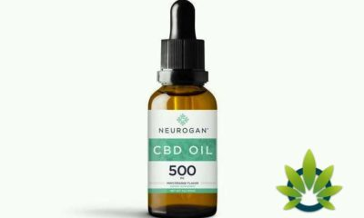 neurogan human cbd hemp oill