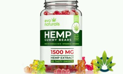 new age naturals premium hemp gummies