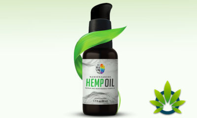 PrimeMyBody Nano-Enhanced Hemp Oil