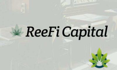 ReeFi Capital