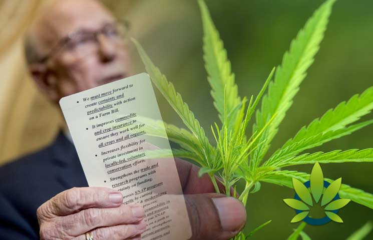 Senators Push For Newer Hemp Policies Amid Govt. Shutdown In Light Of 2018 Farm Bill Passing