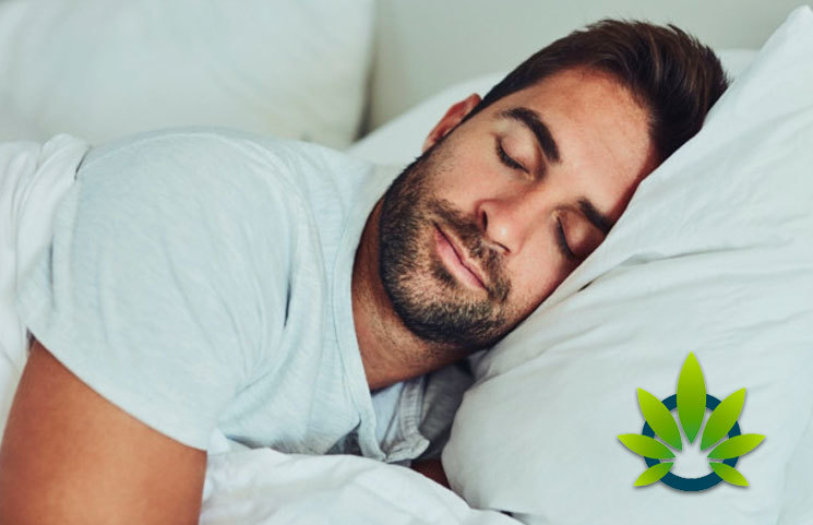 CBD Oil Vs Melatonin Natural Sleep Aids