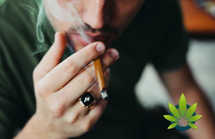 New Marijuana Study Indicates CBD Might Increase the Psychoactive Effects of THC