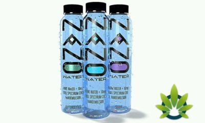 tesla nootropics and its nano cbd infused water