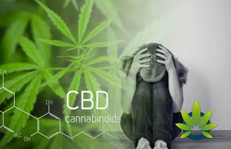 CBD For Mental Health Disorders: