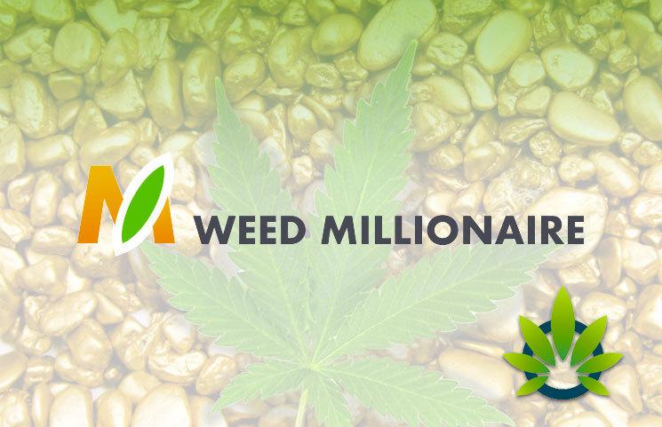 Weed Millionaire App
