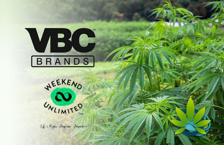 Weekend Acquires Verve Beverage Company (VBC), Shares VBC's CHAMP CBD Drink US Expansion Plans