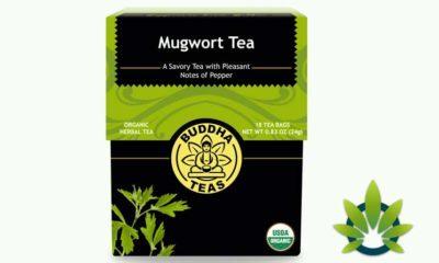 cbd buddha teas