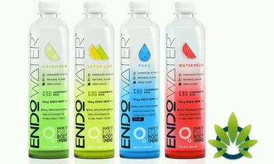 endo water