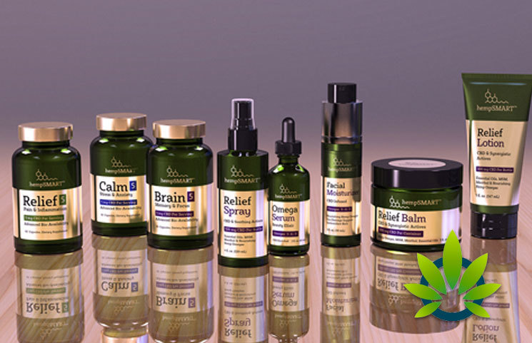 HempSMART: Full Spectrum Hemp CBD Oil Drops, Nootropic Brain